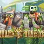 Wild Turkey Online Slot